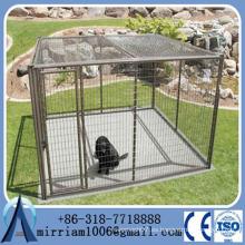 De acero grande de la jaula del perro de China Proveedor / jaula de perro grande