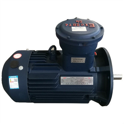 CNE IEC Standard Flameproof Speed ​​Regulation Motor