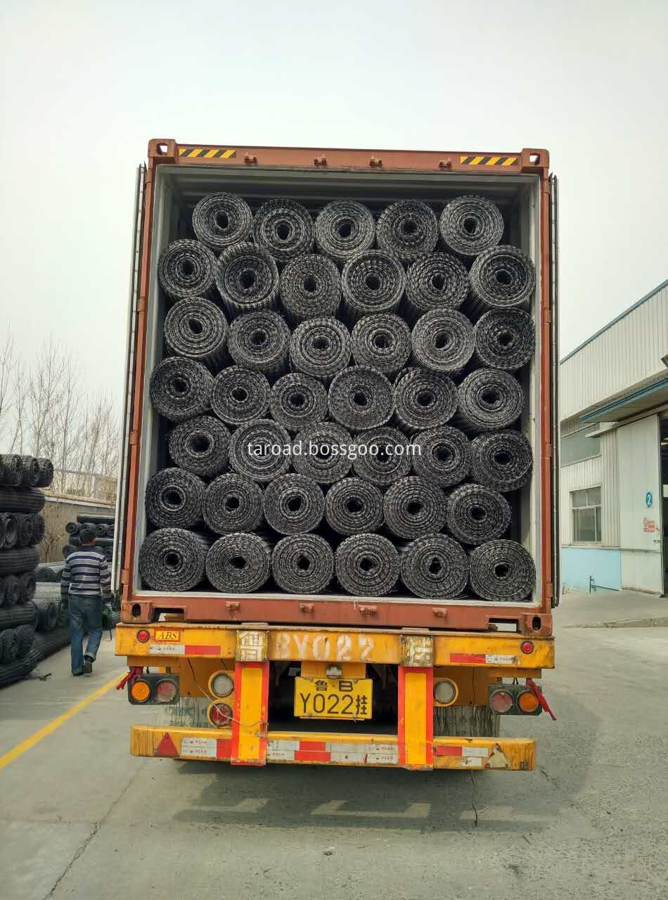 plastic geogrid for protection