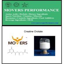 Nutrition sportive: Créatine Orotate avec numéro CAS: 768386-56-7
