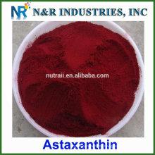 Pulver mit 10% Astaxanthin