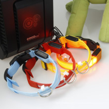 Waterproof Usb rechargeable dog collars/dog collar led