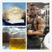 99% de pureza de esteroides anabólicos en polvo Boldenone acetato para la construcción de músculo