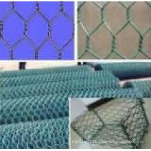 hexagon mesh