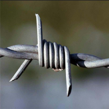 hot dipped galvanized/pvc coated barbed wire