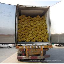 exportadores de jengibre China / comprar jengibre chino