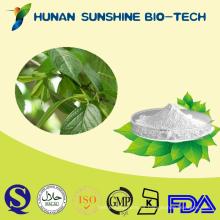 Eucommia Ulmoides puro ácido clorogénico 5% --- 98% por HPLC