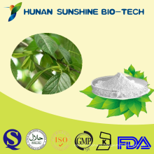 Pure natural Eucommia Ulmoides Chlorogenic acid 5%---98% by HPLC