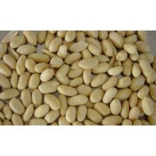 Haute qualité pour les arachides blanchies