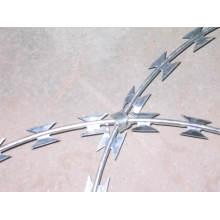 Pour sécurité Fence Razor Wire