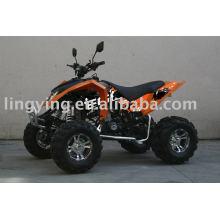 250CC RAPTOR AGGRESSIVE EEC ATV