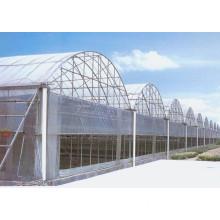 Economical Greenhouse/Vegetable Greenhouse/Flower Greenhouse/Seeding Greenhouse/Shading Greenhouse