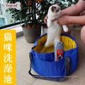 Hundemischung colorus, das spezielles Pool für Hundebad tup kaut