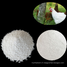 Dicalcium Phosphate 18% Powder ou Granular China Supplier