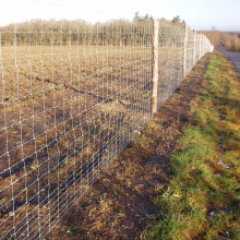 Solidny zamek Fixed Cattle Fencing