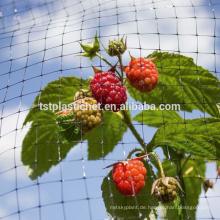 Extrudiertes quadratisches landwirtschaftliches Antivogelschutznetz
