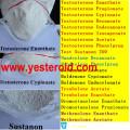 Acétate anabolique de stéroïdes androgènes de Trestolone (7 alpha-Methyl-19-nortestosterone) pour la vente