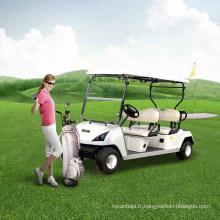 Véhicule utilitaire de base de chariot de golf de 2 places utilisé dans le terrain de golf (DG-C2)