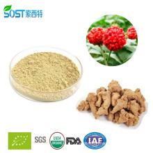 Hot sale Radix Notoginseng Extract with Panax notoginsenosides