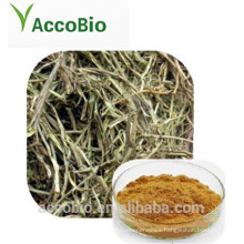 High Quality 100% Natural Certificated Organic White Willow Bark Extract Powder
