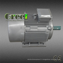Générateur d'aimant permanent de 950rpm pour le vent et la turbine hydraulique