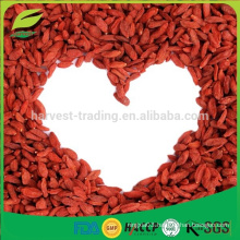 Factory direct supply dried goji berries wolf berry