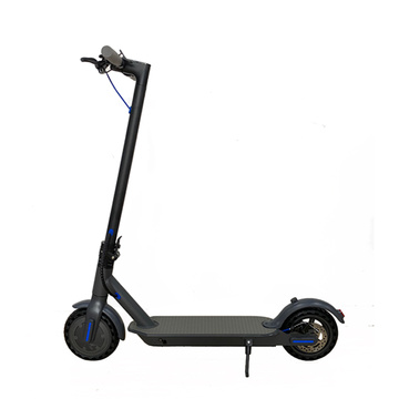 Scooter elétrico adulto com motor potente de 350 w