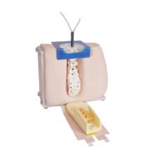 Modelo avançado de equipamento de treinamento de punção lombar médica