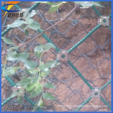 Factory Price Diamond Wire Mesh for Slope Protection