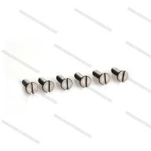 Custom-made OEM Titanium Bolt Screw With High Precision