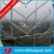Gute Qualität, hohe Stärke Speicial Pattern Conveyor Belt