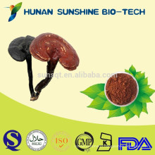 Herbal Extract & Herbal Medicine Reishi Mushroom Extract Powder For Treatment Diabetes