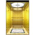 Пассажирский Лифт Лифт Зеркалом Вытравленное Мистер И РСЗО Аксен Гл-Х-055