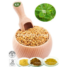 High Quality Fenugreek Seed Extract Furostanol Saponins, Fenugreek Saponins