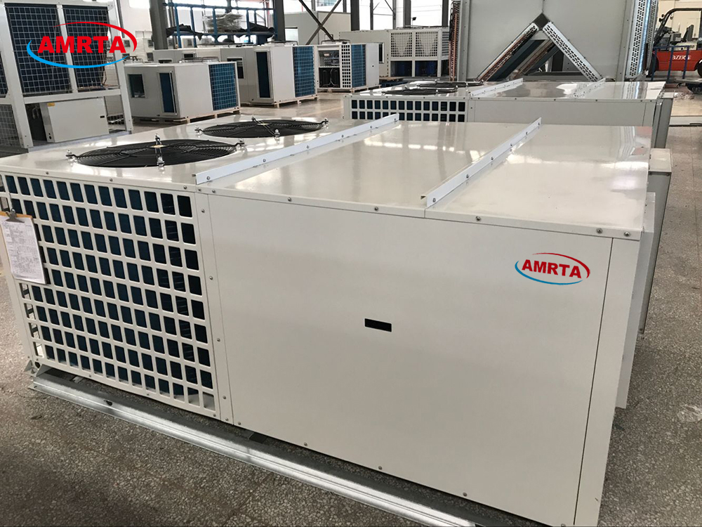 Cooling and Heating Air Conditioner with Economizer