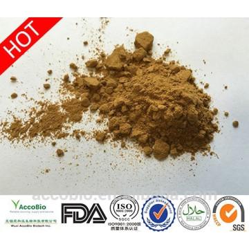 100% natürliche Qualität Tribulus Terrestris Extrakt Pulver Saponine 40% Protodioscin 20%