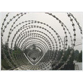 Barbed Wire/Galvanized Barbed Iron Wire/PVC Coated Barbed Wire