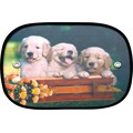 CARTOON Pattern nylon polyester side sunshades