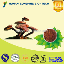 Health Care Product Glossy Ganoderma P.E. Powder for Sex Power Increasing