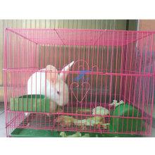 China Fabrik heißer Verkauf Kaninchen geschweißt Drahtzaun