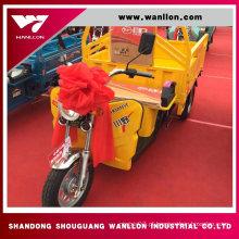 Eletro-triciclo 650W para o triciclo da carga do pedal