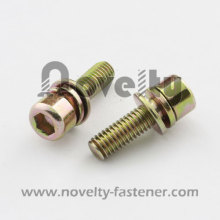 Hex Socket Combination Screws