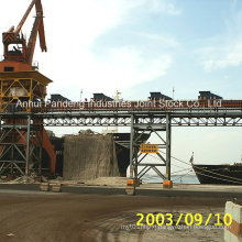 ASTM/DIN/Cema/Sha Standard Port Material Handling Belt Conveyor