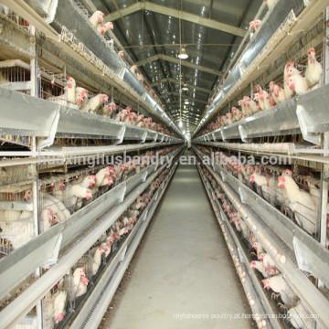 Design novo galvanizado a quente tipo H máquina de alimentação automática camada de design gaiola de galinha gaiola de frango