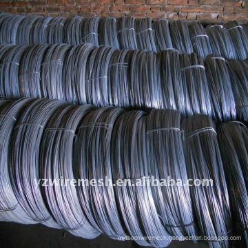 Electro/Cold Galvanized Wire Factory
