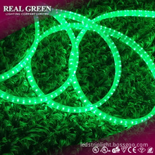 220V 2-Wire Standard Emerald Green LED Rope Light