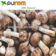 agaricus blazei mushroom extract