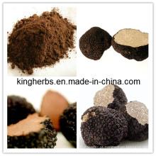 Alta qualidade e preço barato para extrato de trufa preta