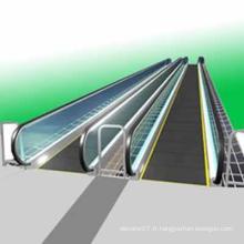 12 degrés Ascenseur de marche mobile Fjr5000-1