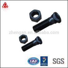 Personalizado aço de alta resistência hs parafuso